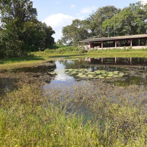 Camping Adventure Camping Hostel in Farm-jaboatão dos Guararapes-Recife-PE-3