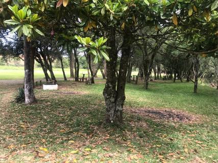 Camping Casa Verde
