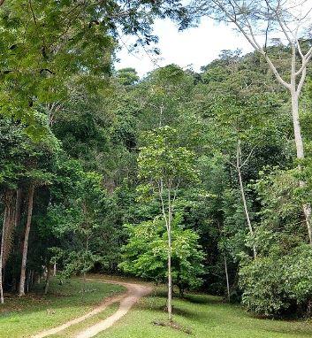 Apoio RV - Parque Nacional de Monte Pascoal 2