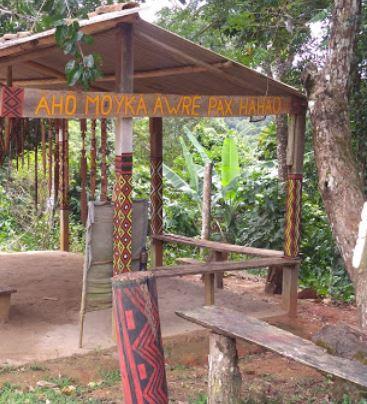 Apoio RV - Parque Nacional de Monte Pascoal 3