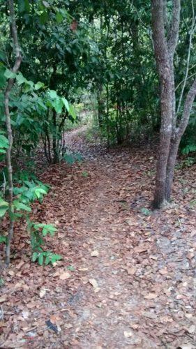 Camping Balneário Encontro das Águas - Carolina-MA-4