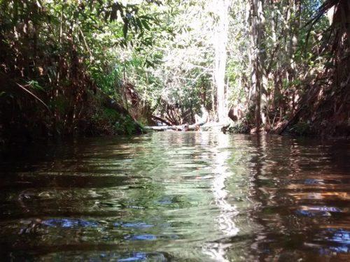 Camping Balneário Encontro das Águas - Carolina-MA-6