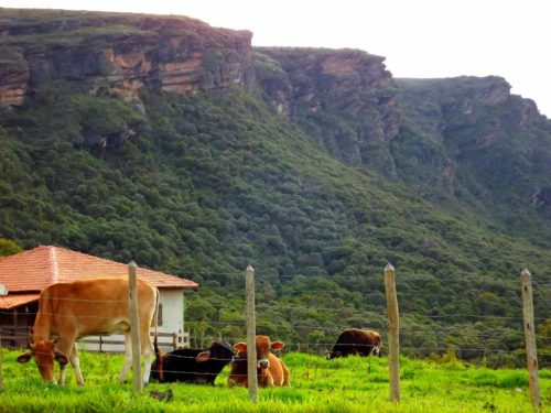 Camping Hostel Pedra do Equilíbrio
