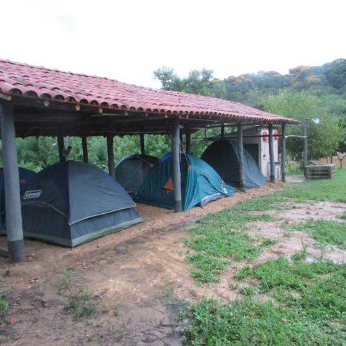 Camping Saracur João