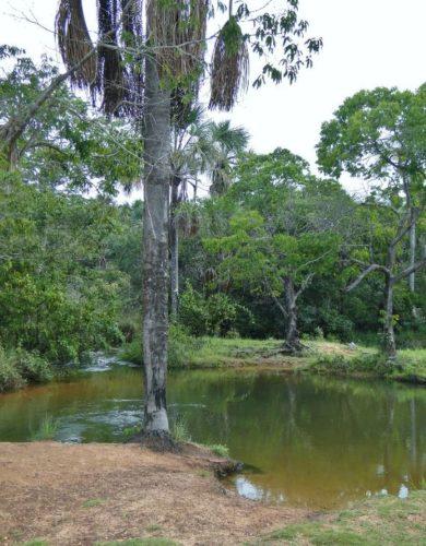 Camping Selvagem – Lagoa – Paraúna