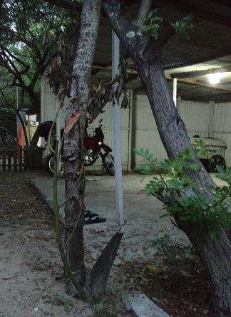 Camping do Corredor Leopoldo-Rio Grande-RS-3