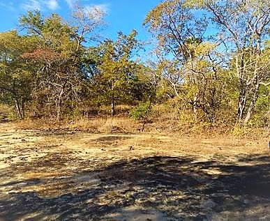 Camping ou Apoio Selvagem - Transamazônica - Barão de Grajaú 2
