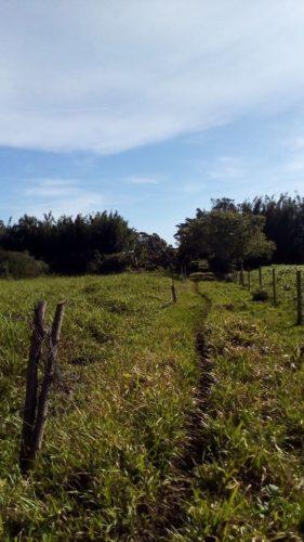 Camping Quintal Abaetetuba-Jaguaruna-SC-4