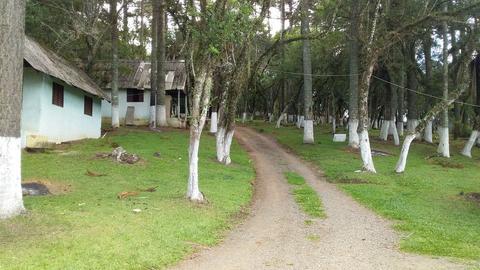 Camping e Restaurante Tio Lu-Lages-SC-1