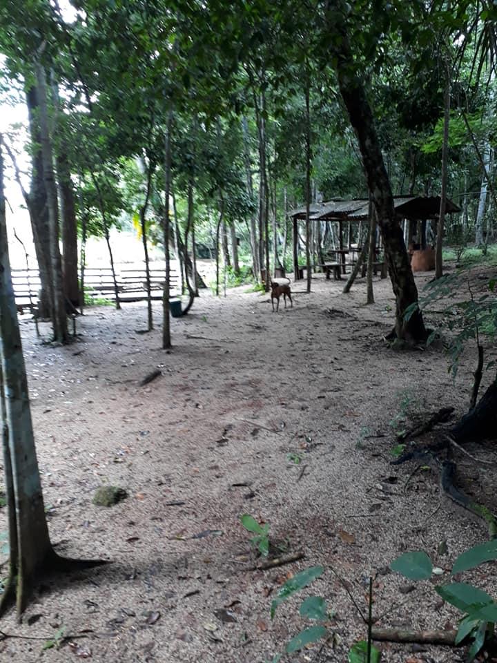 Camping Cachoeira do Protázio