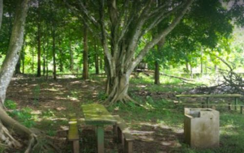 Camping Parque Recreativo Tocari-Ouro Preto do Oeste-RO-7