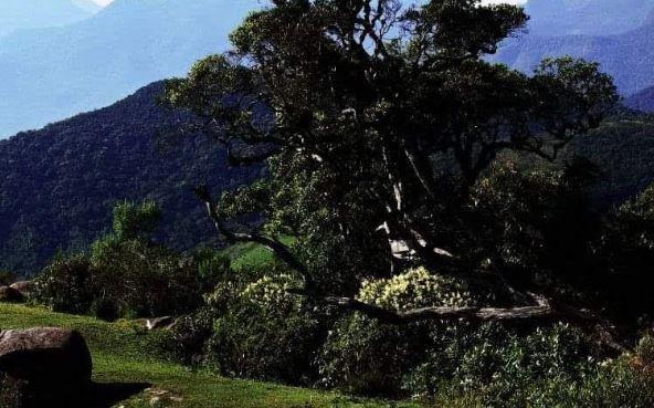 Camping Selvagem - Pedra da Macela - Paraty-Cunha 5