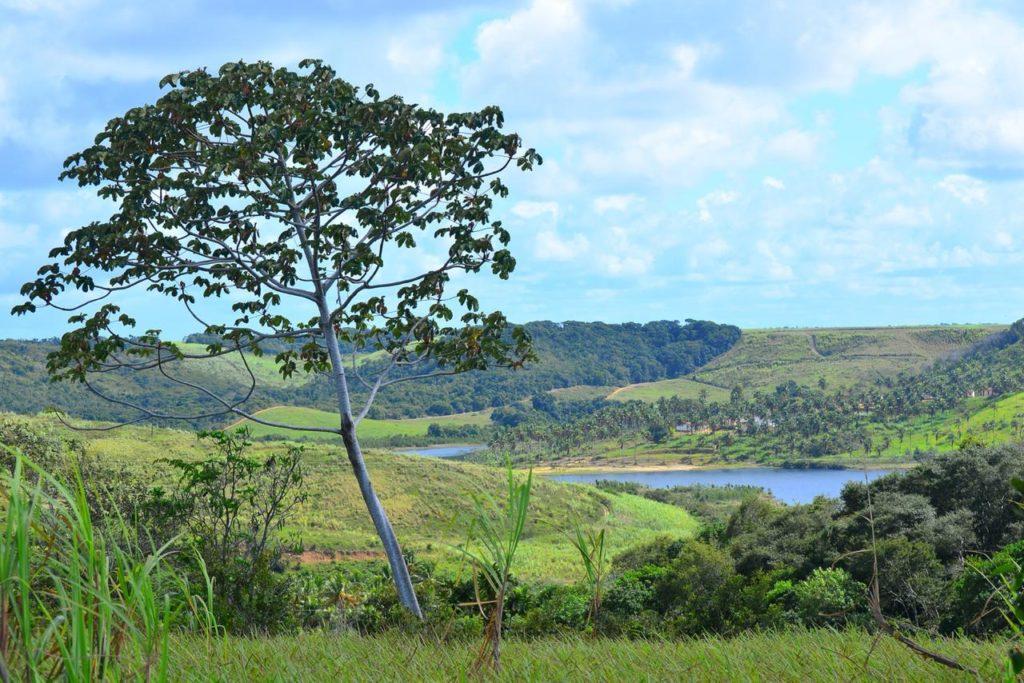 Camping Terra de Índio - Estação Ecocultural-Barra de São Miguel-AL-macamp-17