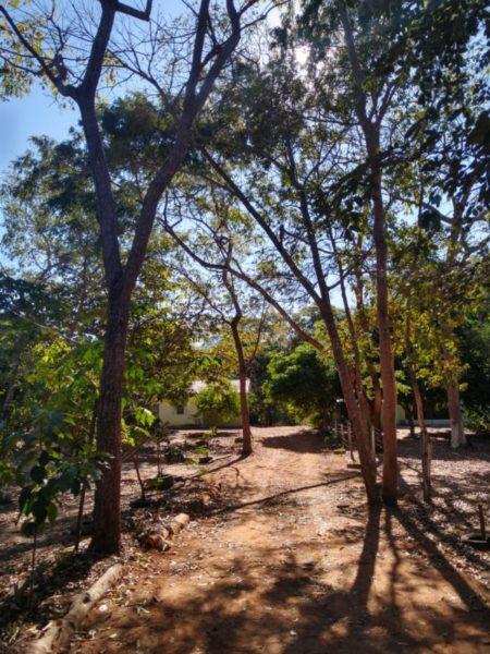 Camping Rancho Benvindo-Peixe-TO-1