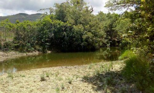 Camping Selvagem - Cachoeira das Bateias - Delfinópolis 2
