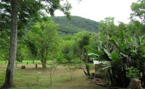 Camping Nossa Senhora Aparecida – Morro Reuter