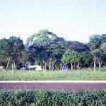 iguacu-57_zps1834a9ac-jpg-2
