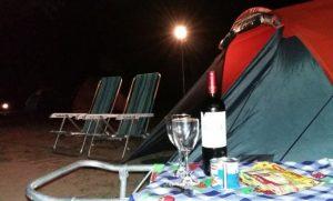 TRIPS: Vinhos – Conheça a Bebida e Dicas de Visitação das Vinícolas do Rio Grande do Sul