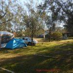 camping_cardoso_surf