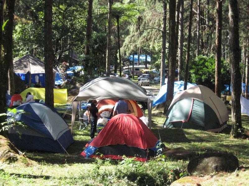 Vem aí a Festa de Queijos e Vinhos do CCB 2012