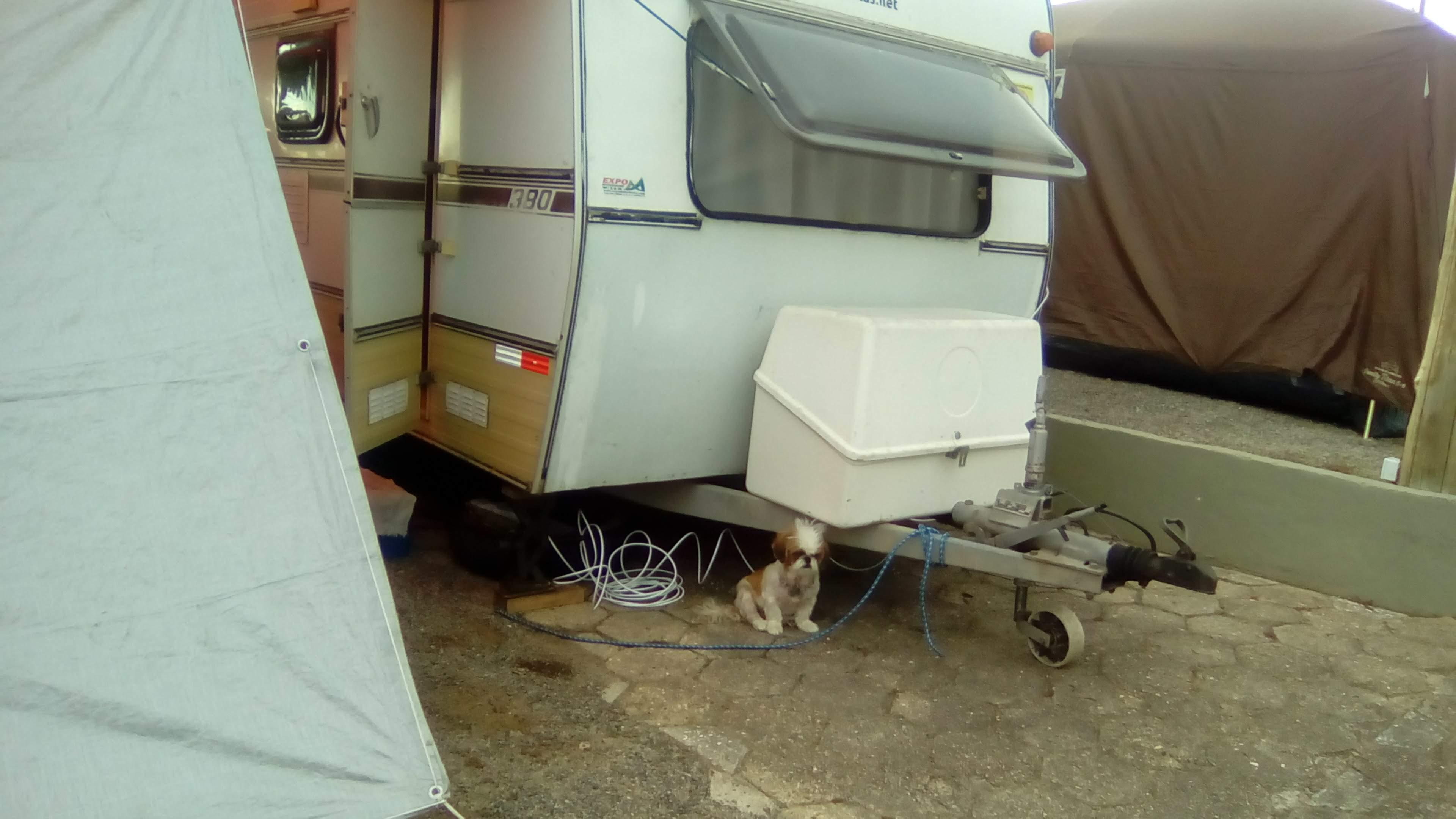 Cindy cuidando do acampamento enquanto o desmontamos.
