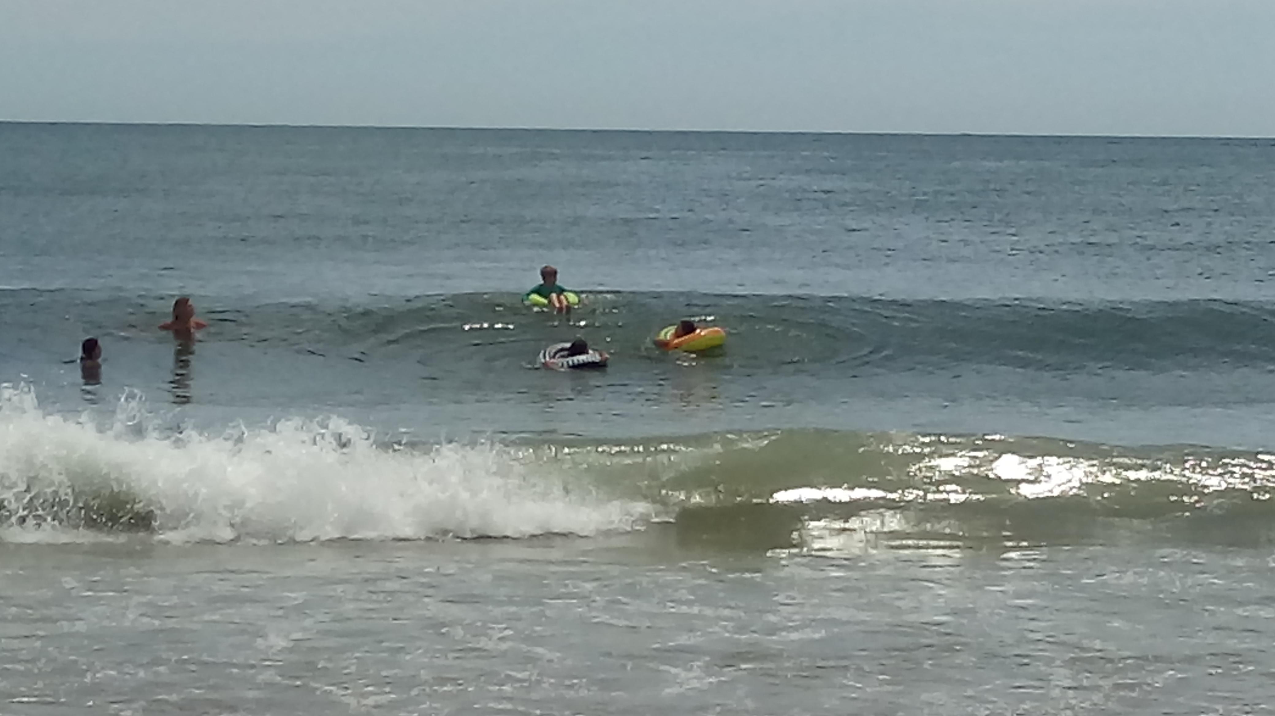 Filhota aproveitando o mar.